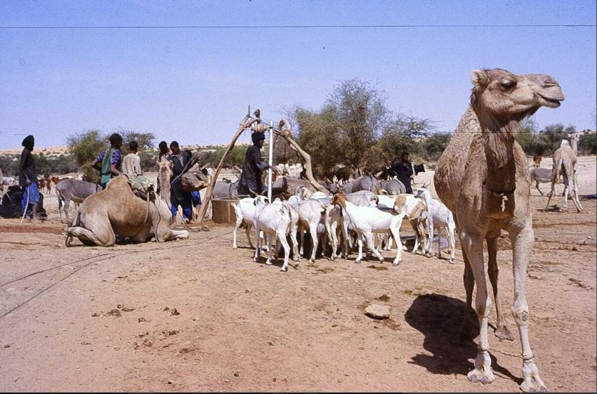 At a well in the Timbuktu region