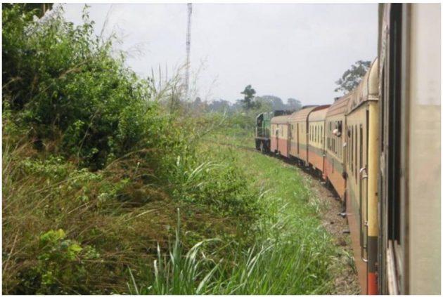 Cameroonian Railway Camrail