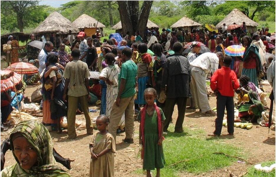 Ethiopia Society