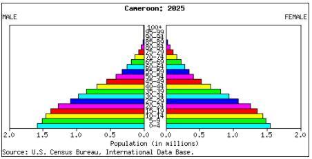 Population pyramid forecast 2025