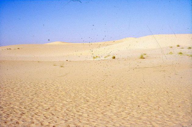 Sand dunes near Timbuktu