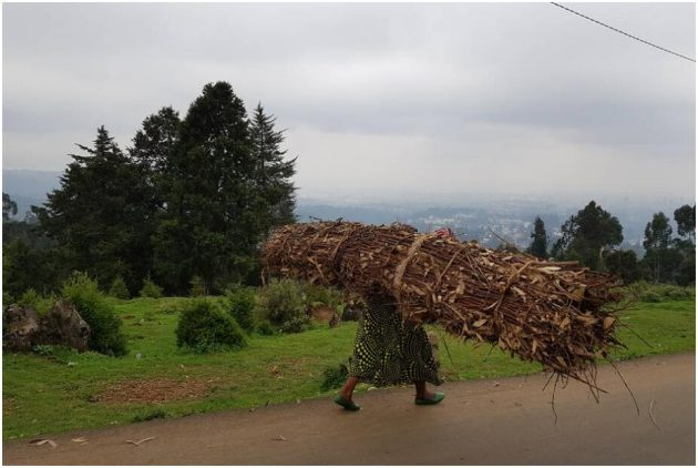 Woman carries firewood down Mount Entoto