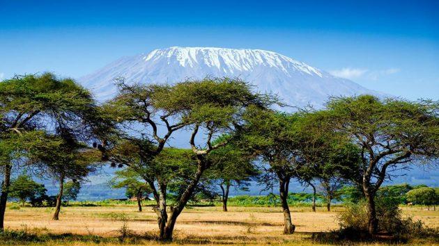 The Best of Kenya & Tanzania